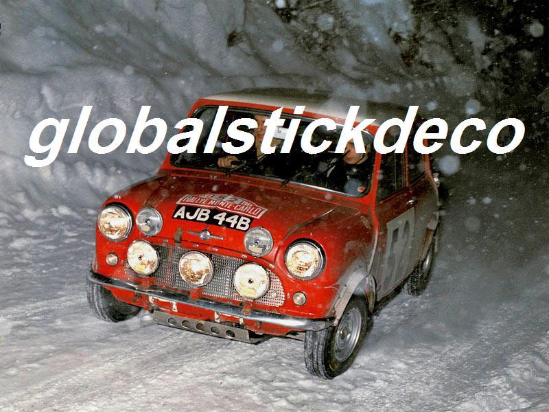 Mini global